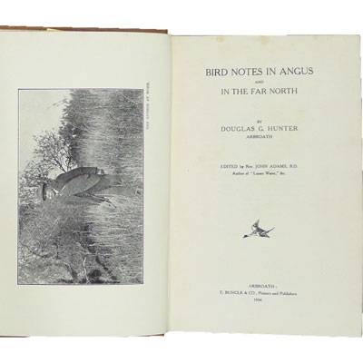 Bird Notes in Angus and in the Far North